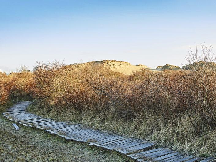 Natuurreservaat De Westhoek